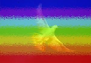Immagine tratta dal sito: http://www.pacepianoro.it