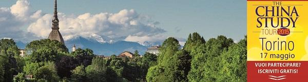 the-china-study-tour-torino