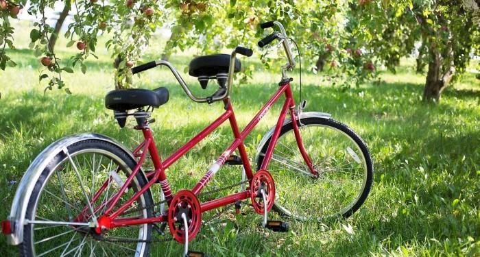 La bicicletta di Dio_1 700