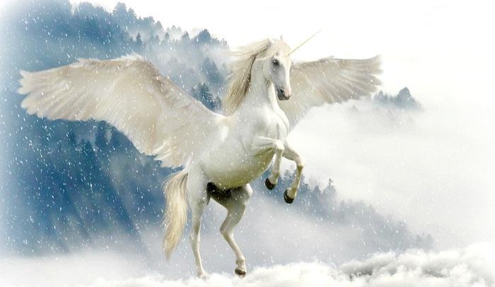 Sogno - L'unicorno