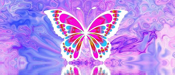 Amore Bruco Farfalla